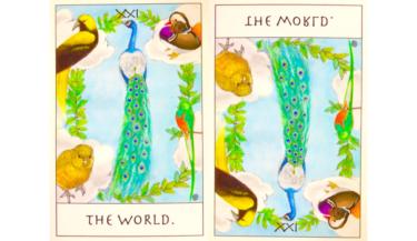 タロットカード『世界』が意味する恋愛運と仕事運【正位置/逆位置】