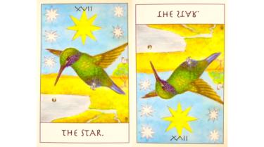タロットカード『星』が意味する恋愛運と仕事運【正位置/逆位置】